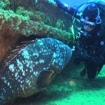 submarinismo-02