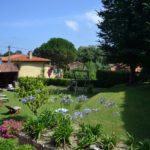 jardin (5)