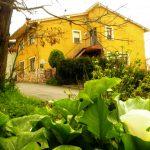 Casa Trasgu