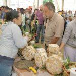 Certamen del queso artesano y artesanía de los picos de Europa