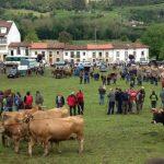 Feria del ganado de San Isidro.