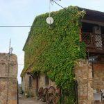 casa bacho (3)