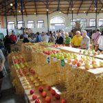 festival de la  manzana villaviciosa (2)