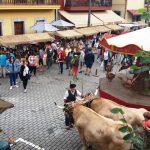 mercau asturianu en benia de onis (1)
