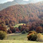 Refugio de Vegabaño situado entre la inmensa pradera de Vegavaño y los magnificos bosques que la rodean.