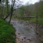 senda fluvial infiesto