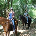 rutas-a-caballo-asturias-los-cauces1