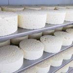 queseria-main-queso-estanteria01