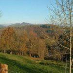 casa rural los negrales (9)