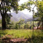 vistas Peruyes, Cangas de Onís