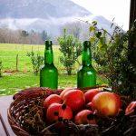 Sidra y manzanas Asturianas