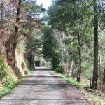 camino_sobrefuentes