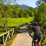 El Salto bridge over Trubia river. Senda del Oso. Teverga. Fundacion Oso de Asturias.  Las Ubiñas- La Mesa Natural Park. Camin Real de la Mesa. Asturias.